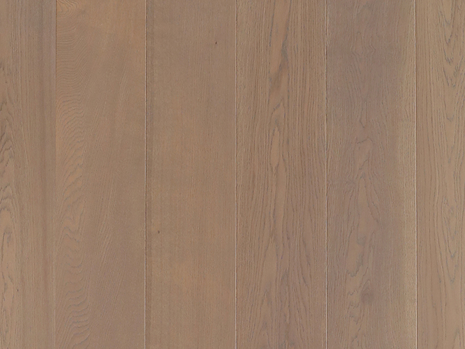 栎木-DR095